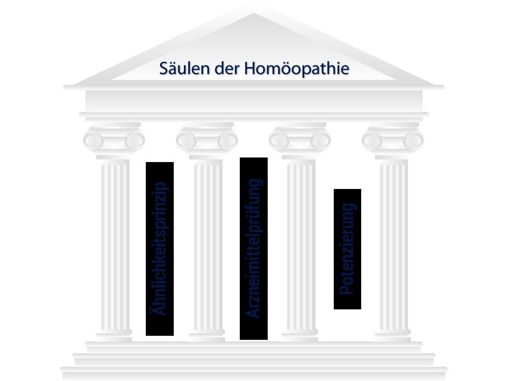Säulen der Homöopathie